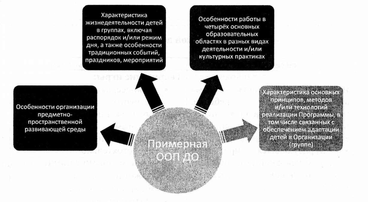 программа особенности образовательного процесса